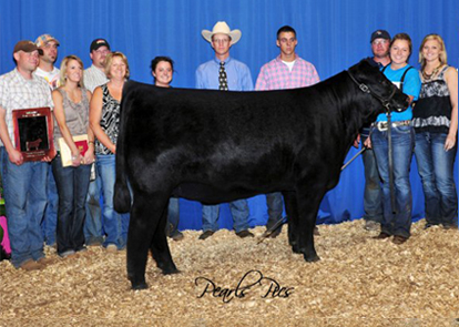 2011 National Junior Chi Angus Show